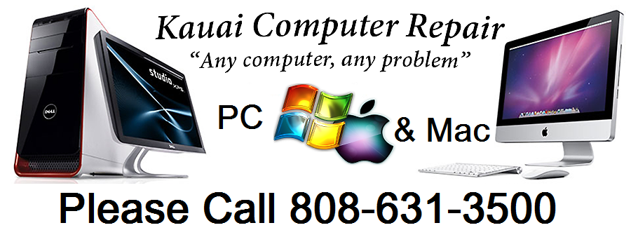 Fastest Computer Repair on Kauai!